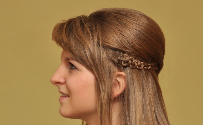 Image result for partial braid